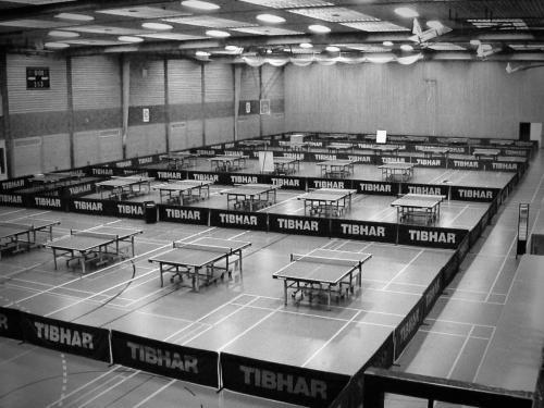 Tischtennis-Institut Thomas Dick  - 8
